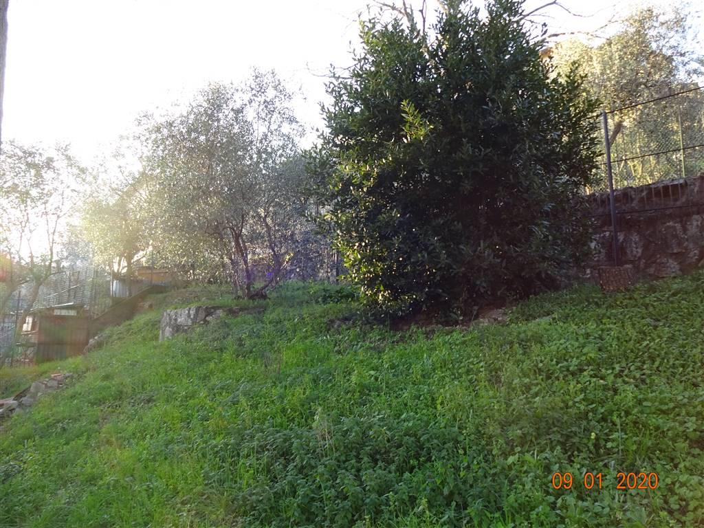 VILLA VENDITA Prato  - La Querce